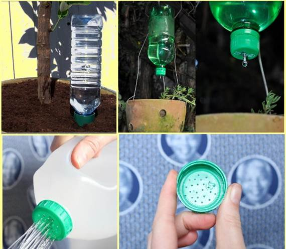 Reuse-Plastic-Bottle-Gardening