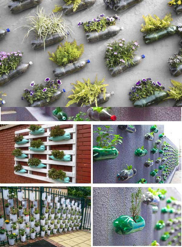 plastic-bottles-reuse-wall-garden-diy-green